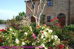 Italy vacation La Mucchia - Casa Vacanza & Art Galleryuse . Agriturismo Farm Vacation House & Motorhome , Az. IL Querciollo , Toscana , garda , Napoli Amalfi, Tuscany & Umbria